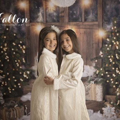 2019 Holiday Mini Sessions-Fallon Photographic Art LLC